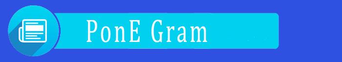 PonE-Gram Kim's Gold Dust